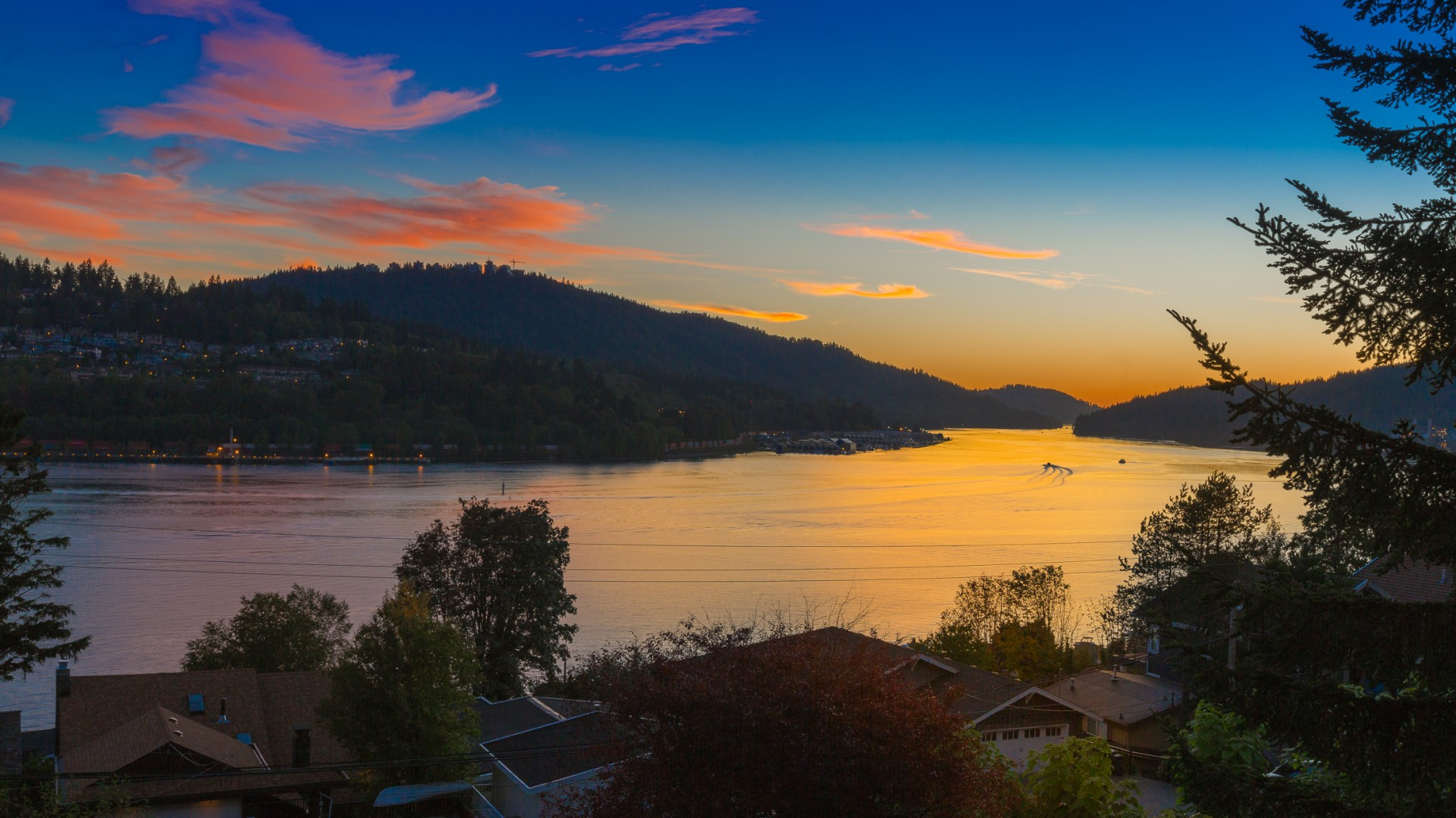 Fern 2015-2343-FS Sunset