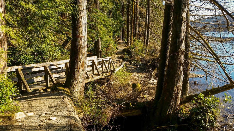 Buntzen-Lake-Trail-Medium